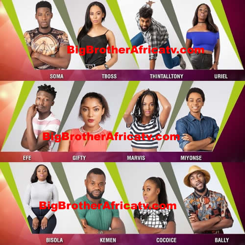 big-brother-nigeria-2017-housemates